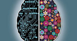 کارنامه مسابقه دانش مغز
